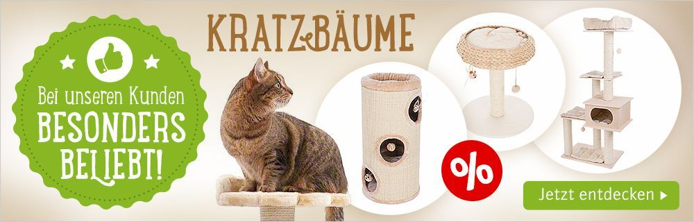 katzenbaum kaufen katzenbaum kaufen top 5 wissenswertes neu katzenbaum tierwelt. Black Bedroom Furniture Sets. Home Design Ideas