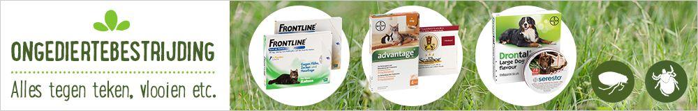 Ongediertebestrijding voor katten
