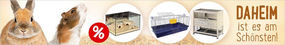 Finden Sie den perfekten Käfige für Kleintiere!
