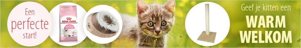 Producten voor kittens