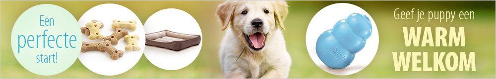 Een warm welkom voor je puppy