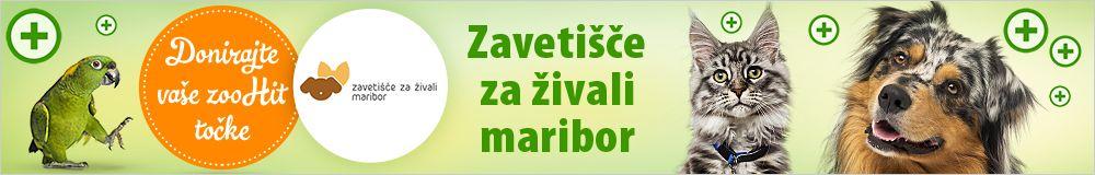 Zoohit točke za Zavetišče za živali Maribor