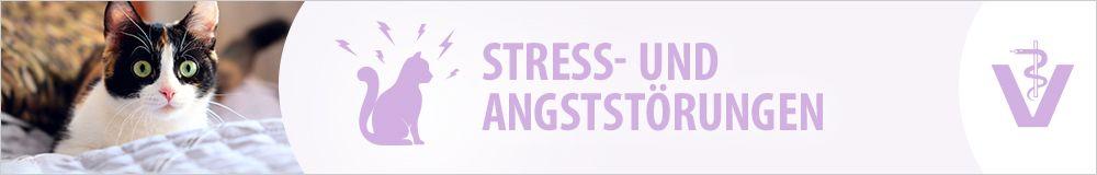 Stress- und Angststörungen