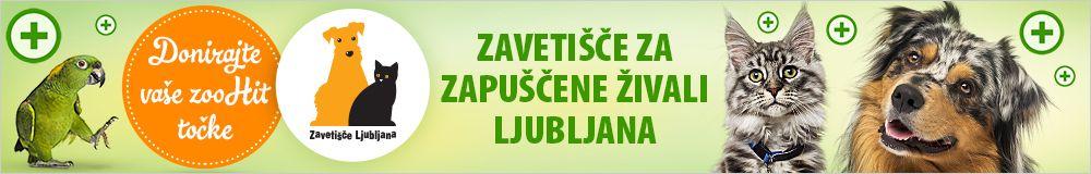Zoohit točke za Zavetišče za zapuščene živali Ljubljana