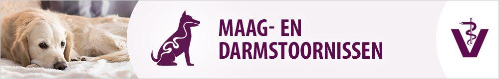 Maag- en Darmstoornissen
