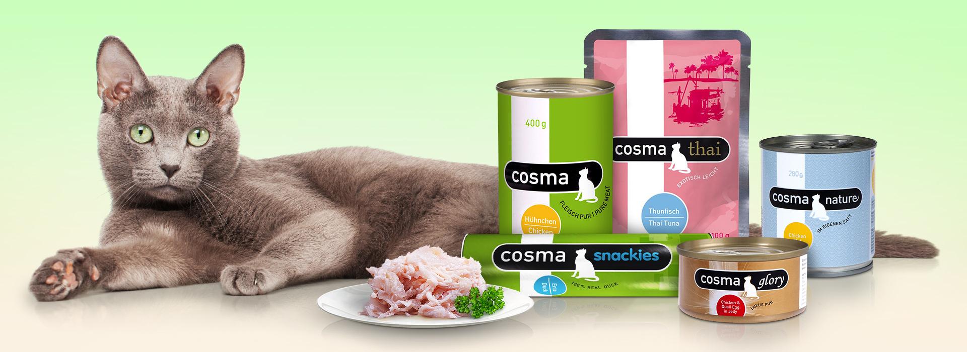 Cosma_Headergrafik