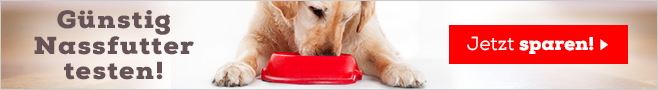 Probierpakete Nassfutter fuer Hunde