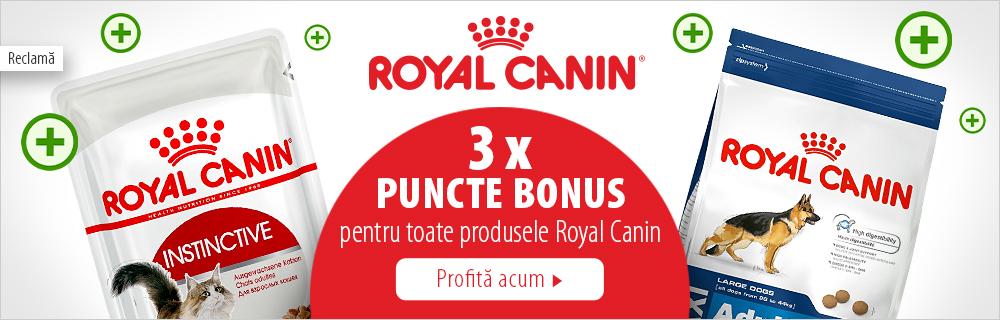 3x puncte bonus la toate produsele Royal Canin