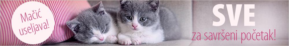 Hrana i oprema za mačiće
