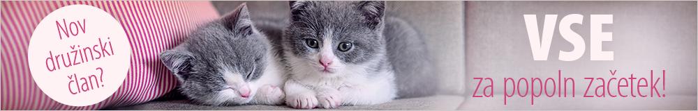 Vsi izdelki za mačje mladiče