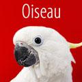 Offres spéciales Oiseaux