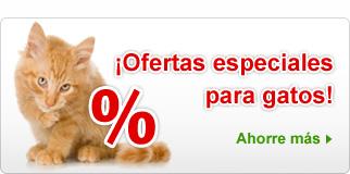 Ofertas especiales Gatos