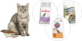 Torrfoder för katter