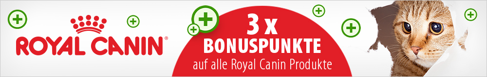 3 - fach Bonuspunkte auf ROYAL CANIN