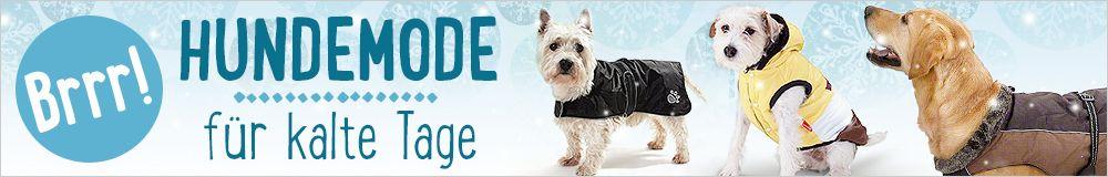 Hundemode für kalte Tage - jetzt warm anziehen!