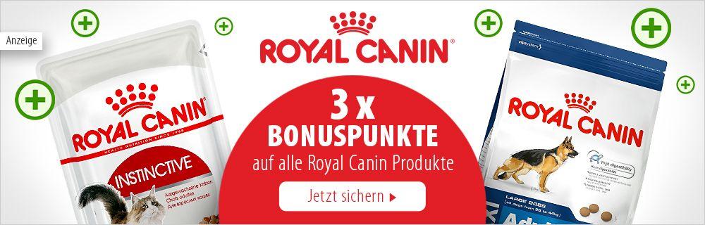 Jetzt 3-fach Bonuspunkte auf das gesamte Royal Canin Sortiment sichern!