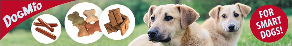 Exklusivmarken für Hunde