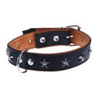 Hundehalsbänder, Hundeleinen + Hundegeschirre