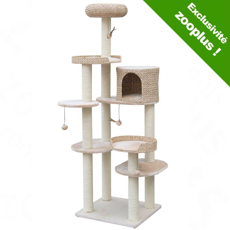 mod le arbre chats chats forum animaux. Black Bedroom Furniture Sets. Home Design Ideas