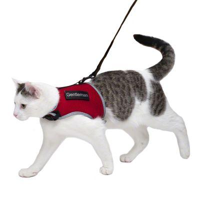 Arnés Trixie XCat con parches y correa para gatos