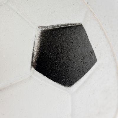 ballon de foot en mousse balle pour chien zooplus. Black Bedroom Furniture Sets. Home Design Ideas