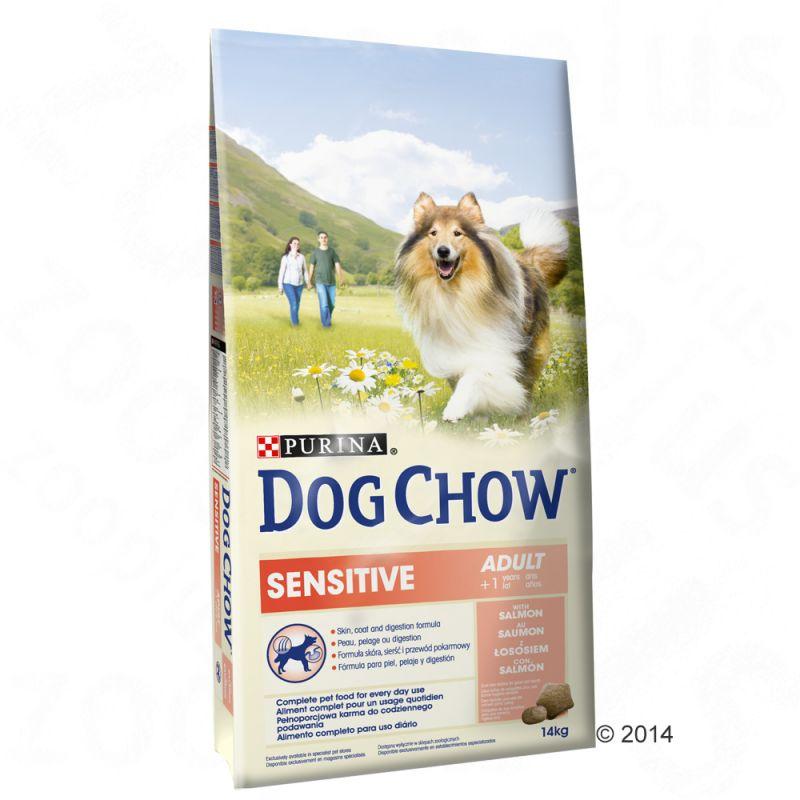 Best Low Fat Sensitive Stomach Dog Food