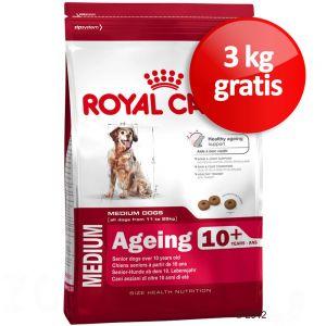 bonuspack royal canin medium ageing 10. Black Bedroom Furniture Sets. Home Design Ideas