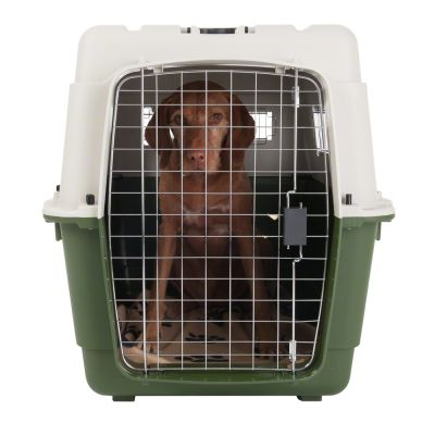 feria cage de transport pour chien et chat zooplus. Black Bedroom Furniture Sets. Home Design Ideas