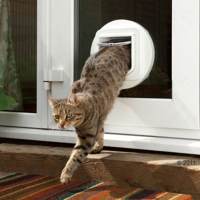Sureflap dualscan chati re pour chat zooplus - Chatiere electronique pour chat ...