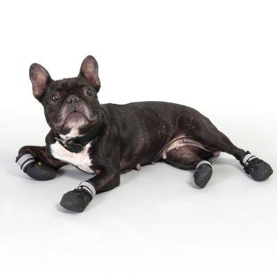 chaussures de protection pour chien s p boots. Black Bedroom Furniture Sets. Home Design Ideas