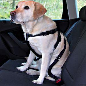 Cinturón de seguridad Trixie para perros