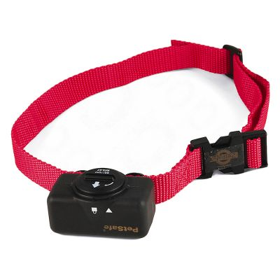 Petsafe Dog Collar Manual
