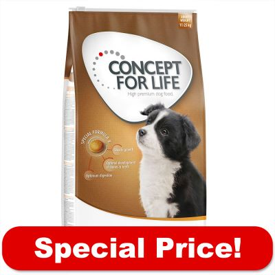 Concept For Life Dog Food Review