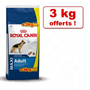 15 kg croquettes pour chiens size royal canin 3 kg offerts animalerie en ligne zooplus. Black Bedroom Furniture Sets. Home Design Ideas