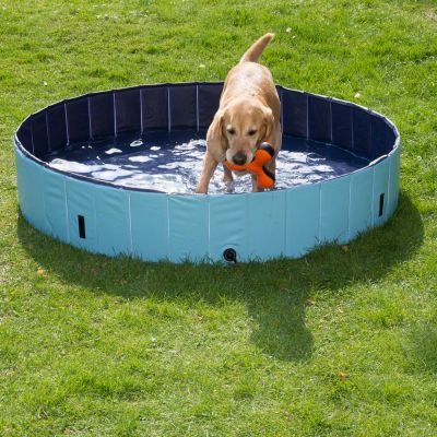 schwimmspielzeug f r hunde dog pool. Black Bedroom Furniture Sets. Home Design Ideas