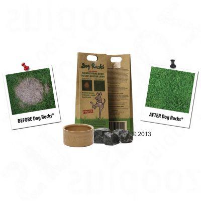 dog rocks natur steine g nstig bei zooplus. Black Bedroom Furniture Sets. Home Design Ideas