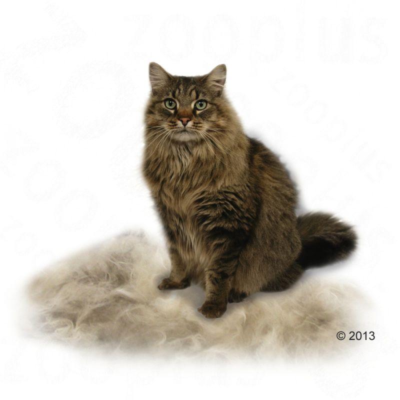 furminator deshedding tool long hair cats free p p 29. Black Bedroom Furniture Sets. Home Design Ideas