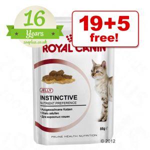 85g Royal Canin Wet Cat Food 19 5 Free Free P Amp P 163 29