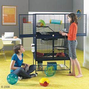 Gabbia per furetti ratti cincill e scoiattoli a 2 piani for Bloccare i piani domestici