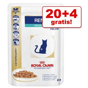 royal canin katzenfutter g nstig bei zooplus royal canin renal mit thunfisch veterinary diet. Black Bedroom Furniture Sets. Home Design Ideas