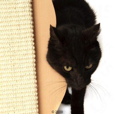 griffoir en forme de chat pour chat zooplus. Black Bedroom Furniture Sets. Home Design Ideas