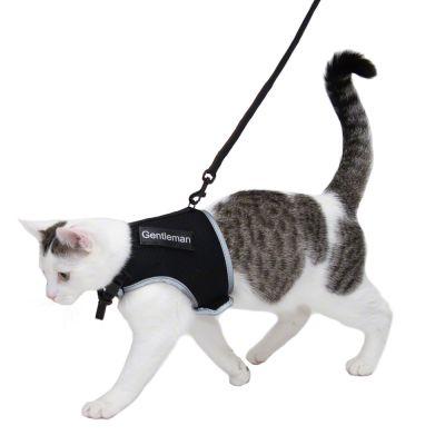 harnais pour chat prix avantageux chez zooplus harnais et laisse xcat trixie avec sticker. Black Bedroom Furniture Sets. Home Design Ideas