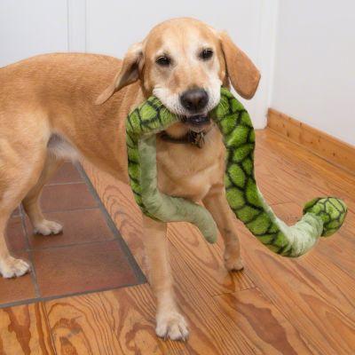 animaux en peluche qui couinent pour chien prix avantageux chez zooplus jouet grand serpent. Black Bedroom Furniture Sets. Home Design Ideas