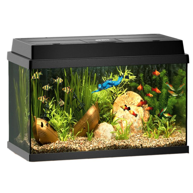 Juwel rekord 600 aquarium free p p on orders 29 at for Aquarium juwel