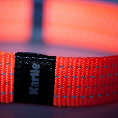 Karlie Reflective Dog Collar Neon Orange