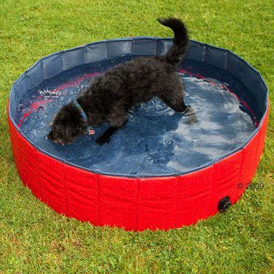 Karlie flamingo doggy pool piscina per cani zooplus - Piscina per cani ...