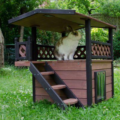 Katzenhaus Maisonette