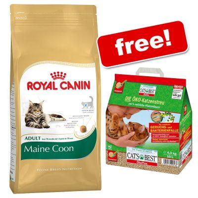 10kg royal canin maine coon 10l cat 39 s best ko plus free. Black Bedroom Furniture Sets. Home Design Ideas