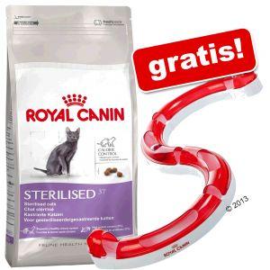 10 kg Royal Canin + Royal Canin Cat Play Circuit