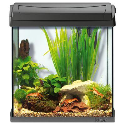 Kit aquarium 30 l aquaart tetra animalerie en ligne zooplus for Aquarium en solde